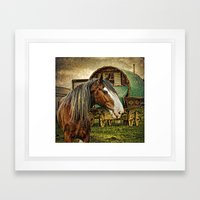 The Gypsy Vanner Framed Art Print