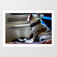 Train Dog Art Print