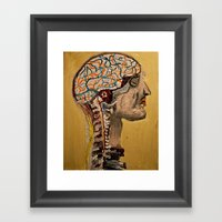 Human Brain  Framed Art Print