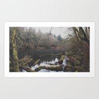 Hidden Pond Art Print