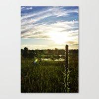 Wolf Lake Sunset Canvas Print