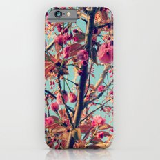 Cacophony iPhone 6 Slim Case