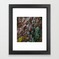 Nature's Patina Framed Art Print