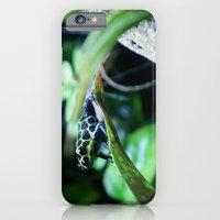 iPhone & iPod Case featuring Imitator Dart Frog by Kimberly Sulzer-Girlwithafrogtattoo