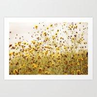 Yellow Flower Field Art Print