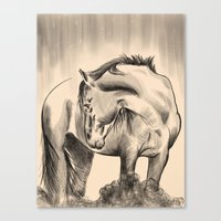 Horse painting color Canvas Print