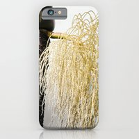 iPhone & iPod Case featuring haiku manuahi palm retro  by Sharon Mau