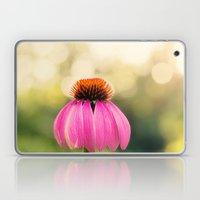 Pink Coneflower Laptop & iPad Skin