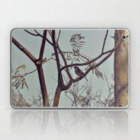 DSC_0617 Laptop & iPad Skin