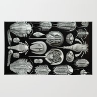 Trilobites And Fossils B… Rug