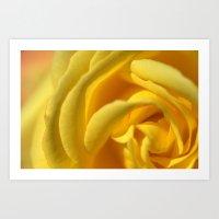 Orient Rose 2486 Art Print