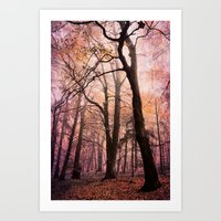 fairytale forest Art Print