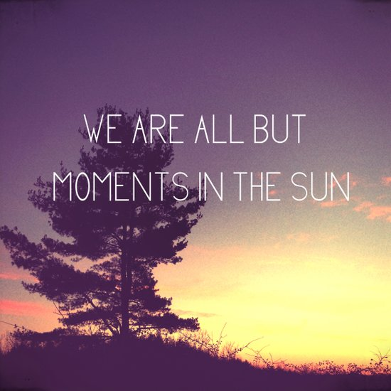 We Are All But Moments in the Sun Canvas Print