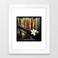 Old wood and a flower. Framed Art Print