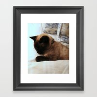 Chessie Cat Framed Art Print