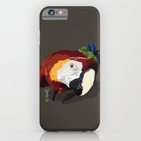 Macaw iPhone 6 Slim Case
