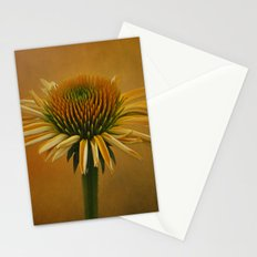 Dressed in Color Stationery Cards