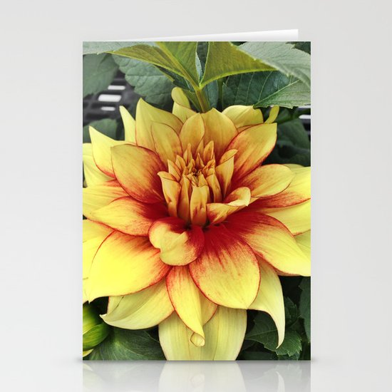 Flower of Hope Stationery Card