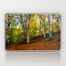 Autumn Trees Woodland Laptop & iPad Skin