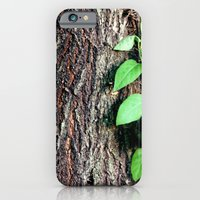 iPhone & iPod Case featuring Wrinkles in Nature by Beth - Paper Angels Photography