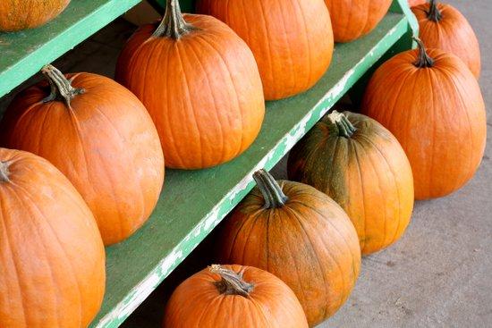 The Pumpkin Stand Art Print