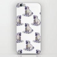 Pugs In A Rug iPhone & iPod Skin