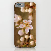 iPhone & iPod Case featuring Blossom by J Coe Photography