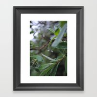 Water Drop Framed Art Print
