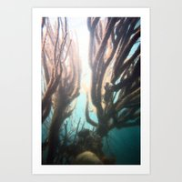 Deep Blue Reef Art Print