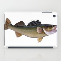 walleye iPad Case