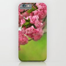 Cherry Orchard iPhone 6 Slim Case