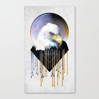 Wise Eagle Canvas Print