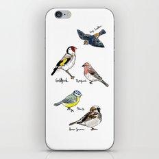 English Birds iPhone & iPod Skin
