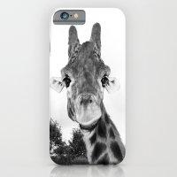 Giraffe. B+W. iPhone 6 Slim Case