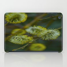 green iPad Case