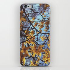 Spring Awakening II iPhone & iPod Skin