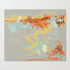 Runoff Patterns Canvas Print