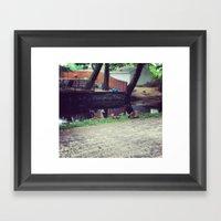 Sitting Ducks Framed Art Print