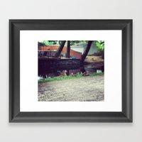 Sitting Ducks Framed Art Print