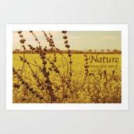 Mustard Plant Art Print
