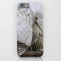 iPhone Cases featuring Shells In Basket by Sandy Moulder