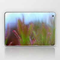 Fairy Like Sundew - JUST… Laptop & iPad Skin