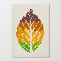 Leaf Cycle Canvas Print