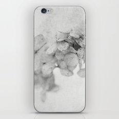 in the snow iPhone & iPod Skin