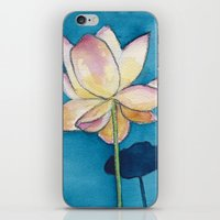 Lotus On Blue iPhone & iPod Skin