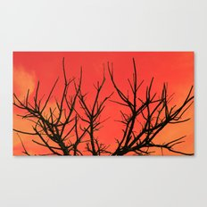 Fire Branch Canvas Print