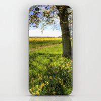 Daffodil Meadow iPhone & iPod Skin