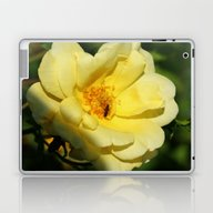 Laptop & iPad Skin featuring Golden Girl by Christiane W. Schulz…