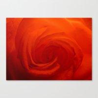 Petal Swirl Canvas Print