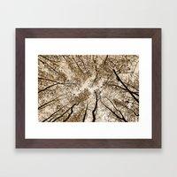 Sepia Fall Framed Art Print